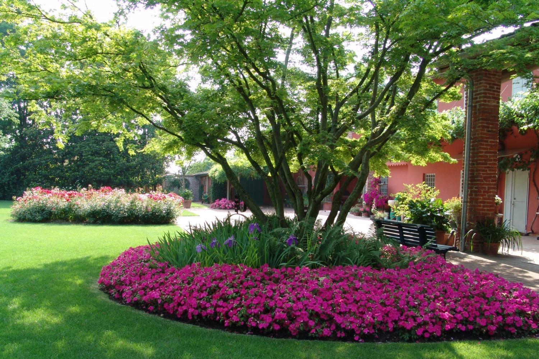 Stunning x jpeg kb am casali srl giardini e piscine - Design giardini ...